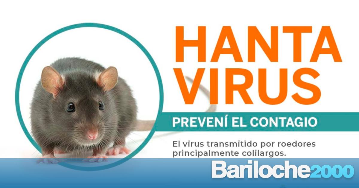 Autoridades de nación desmienten que haya una pastilla para la recuperación del hantavirus